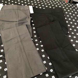Women's Loft pants - brand new
